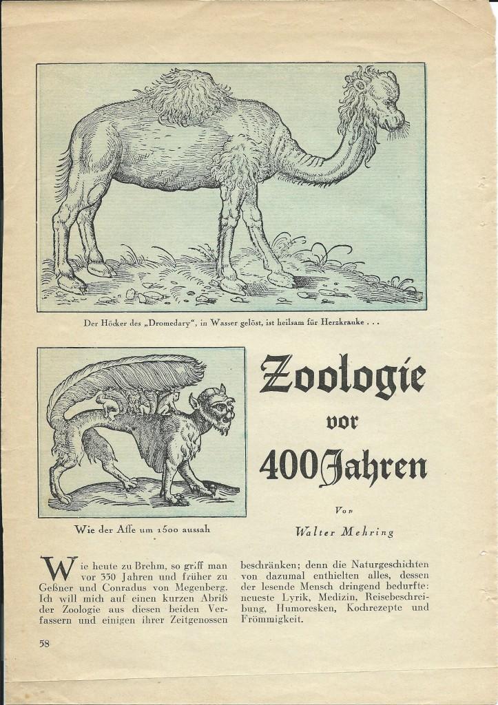 Walter Mehring: Zoologie vor 400 Jahren; erschienen in: Der Uhu, Februar 1929, S. 58